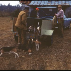 1-24-75 releasing the hunting dogs
