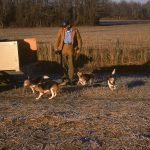 Hunter Frank Cross and his Beagles